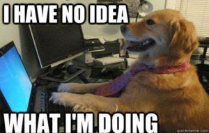 meme dog computer resolution reminder app