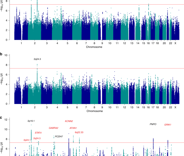 Genome Wide Mega Analysis Identifies 16 Loci And Highlights Diverse Biological Mechanisms In The Common Epilepsies Nature Communications
