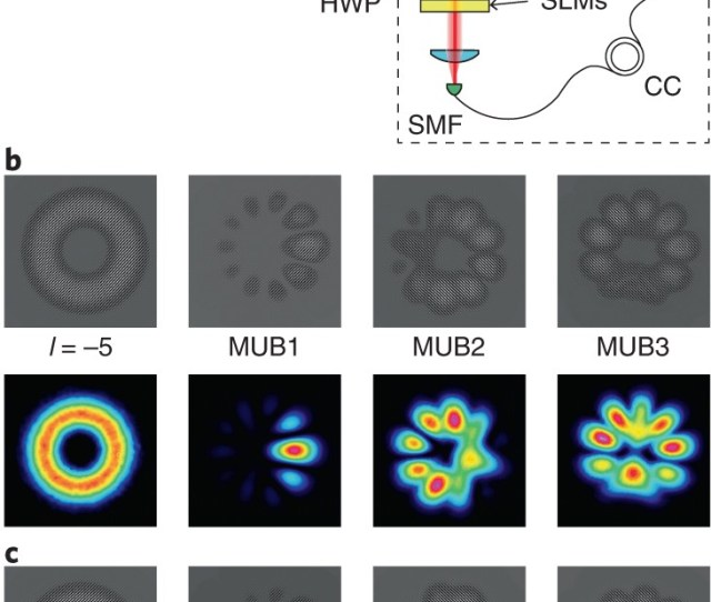 Measurements In Two Bases Are Sufficient For Certifying High Dimensional Entanglement Nature Physics