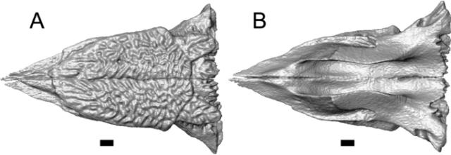 figure28