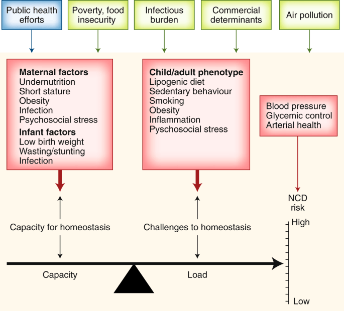 understanding the rise of cardiometabolic diseases in low- and middle-income countries | nature medicine