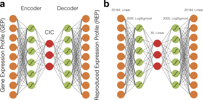 Cell Identity Codes: Understanding Cell Identity from Gene Expression  Profiles using Deep Neural Networks | Scientific Reports