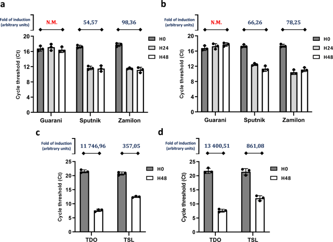 A virophage cross-species infection through mutant selection represses giant virus propagation, promoting host cell survival