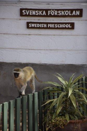Svensk förskola i Nairobi | Svenska skolan i Nairobi