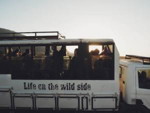 Life on the wildsside