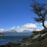 Vandringsled. Parque Nacional de Tierra del Fuego. Ushuaia