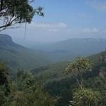 Vy över Blue Mountains (U)