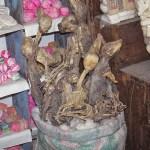 Lamafoster. Häxornas marknad. La Paz