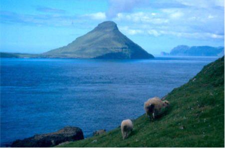 Vy över ön Koltur