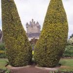 Trädgården. Cawdor Castle