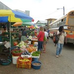 Marknadsdag. Punta Gorda