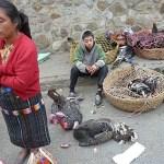 Marknaden. Chichicastenango