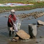 Tvättare. Madurai
