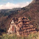 Gammalt hus. Pico Grande