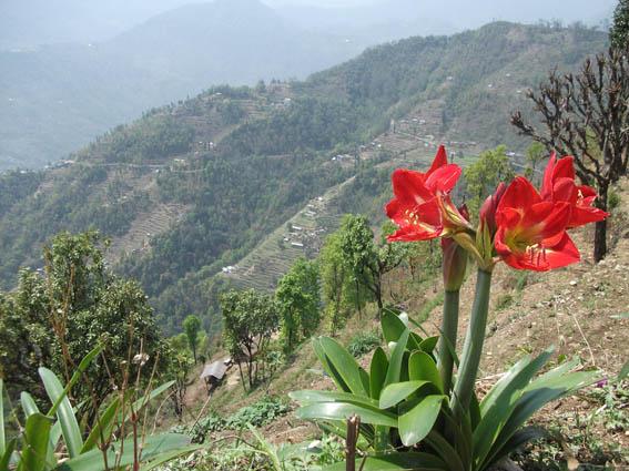 Vackra Sikkim. Yuksom