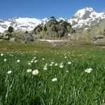 Vandringsmiljö. Pyrenéerna