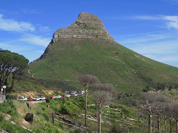 sydafrika-cape-town_08