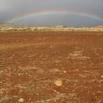 Syriskt landskap. Hama