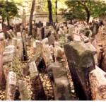 Judiska kyrkogården. Prag (U)