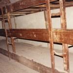 Sängar i fd koncentrationslägret. Terezin