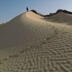 Sanddyner. Sahara