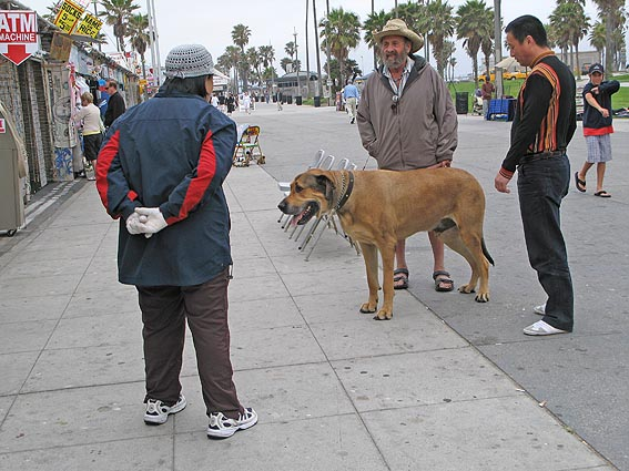 """Bits han?"". Los Angeles"