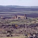 Vy över de romerska ruinerna. Volubilis (U)