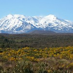 Tongariro National Park. Nya Zeeland (U)