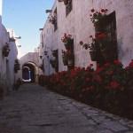 Kloster. Arequipa (U)