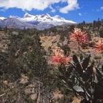 Det vackra peruanska höglandet