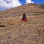 Kvinna på potatisfält