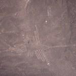 Nascalinjerna, Kolibrin. Nasca (U)