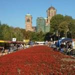 Honungsmarknaden. Belgrad