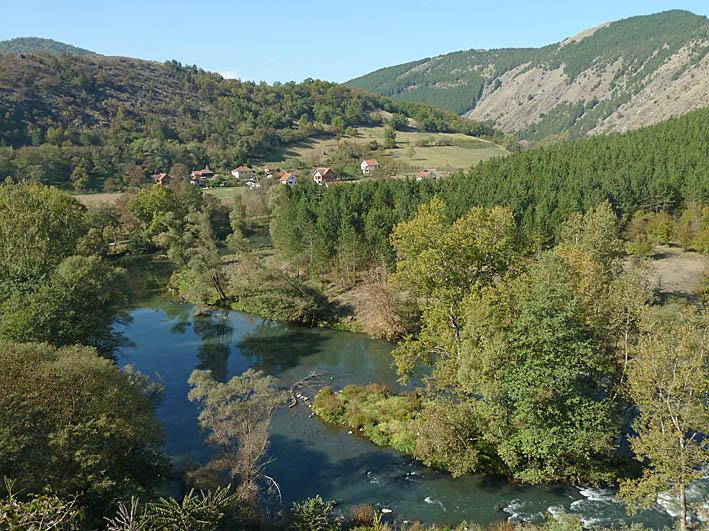 Natur vid Studenica