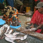 Fiskmarknaden. Dar es Salaam