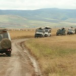 Ngorongoro National Park. Tanzania (U)