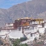 Vy över Potalapalatset. Lhasa