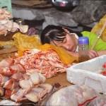 Kinesisk affärskvinna. Lhasa