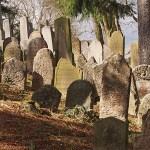 Judiska kyrkogården. Trebic. Tjeckien