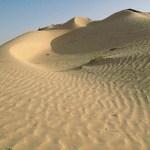 Sanddyner i Sahara. Douz