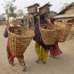 Kvinnor med bärkorgar. Chitwan