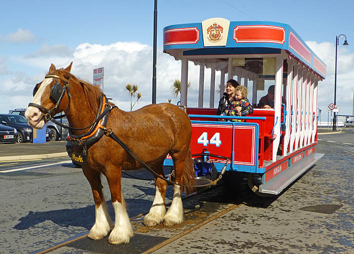Hästspårvagn. Douglas