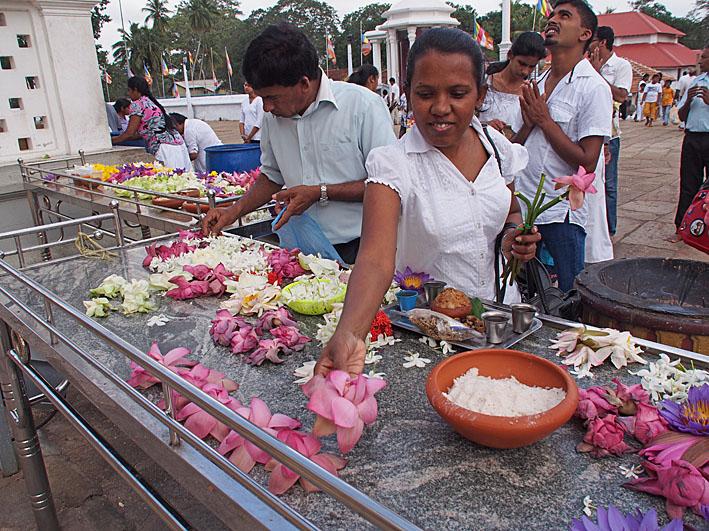 Offergåva. Anuradhapura