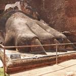 En av lejontassarna. Sigiriya (U)