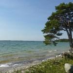 Bästeträsk, Gotlands största insjö