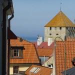 Vy över taken. Visby. Gotland. (U) Sverige