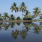 Båtresa i Backwaters
