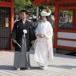 Shintobröllop. Ön Miyajima