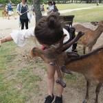 Selfie! Nara