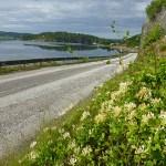 Cykeltur Ljungskile - Uddevalla